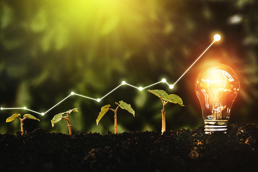 The Utility of ESG Scores